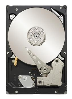 Seagate Constellation 2TB 3.5-Inch SATA 3.0Gb/s 7200 RPM 64M