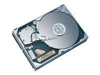 6Y080P0 Maxtor DiamondMax Plus 9 Hard Drive 6Y080P0